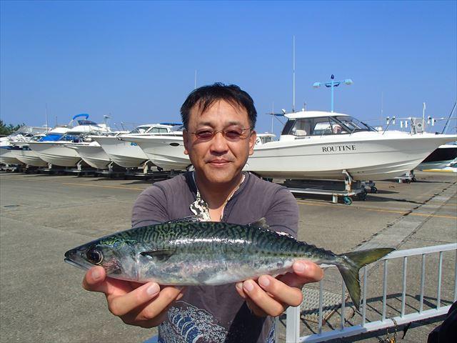 魚神 (3)_R